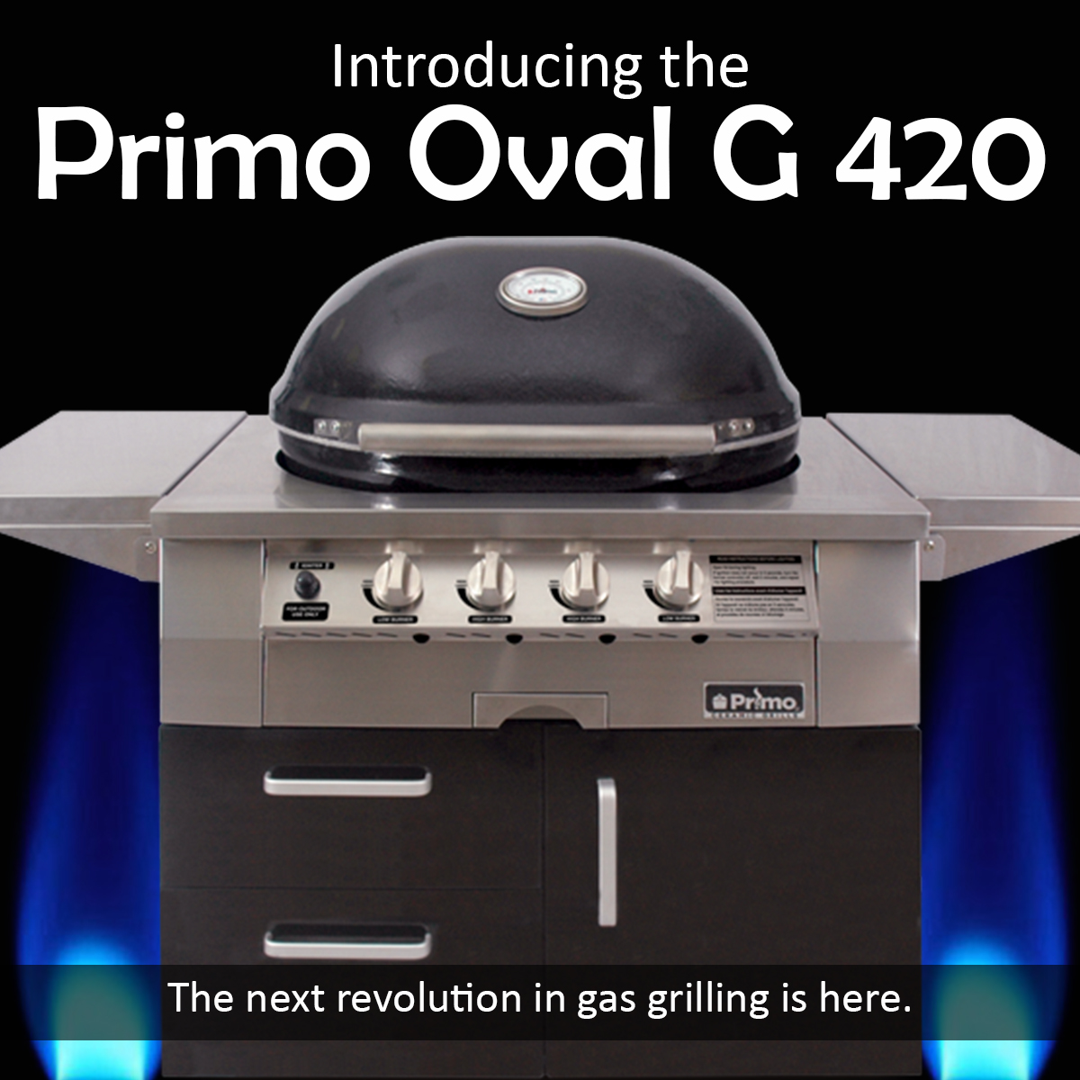NEW Primo Oval G 420
